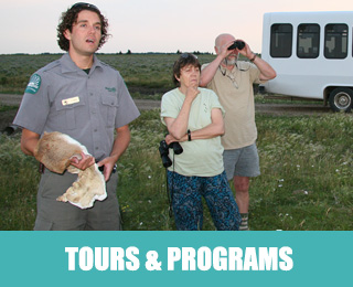 Tours and Programs