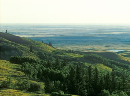 Welcome To The Cypress Hills Interprovincial Park